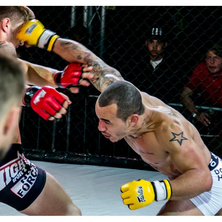 Vitor Silva - Fusion Fighting